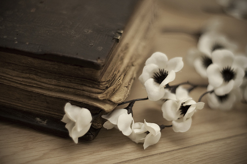 book-flower-flowers-old-pretty-Favim.com-195331