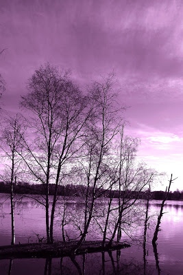 reaching_the_purple_sky_by_rainman65-d30zs37