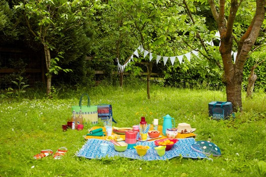 Park Picnic - picnic items on grass